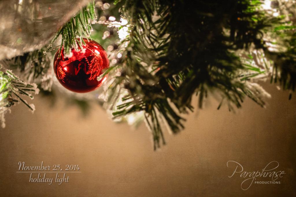 20141125-IMG_9190-Edit-Edit