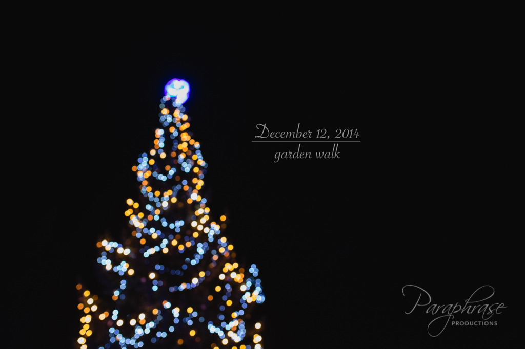 20141212-IMG_0092-Edit