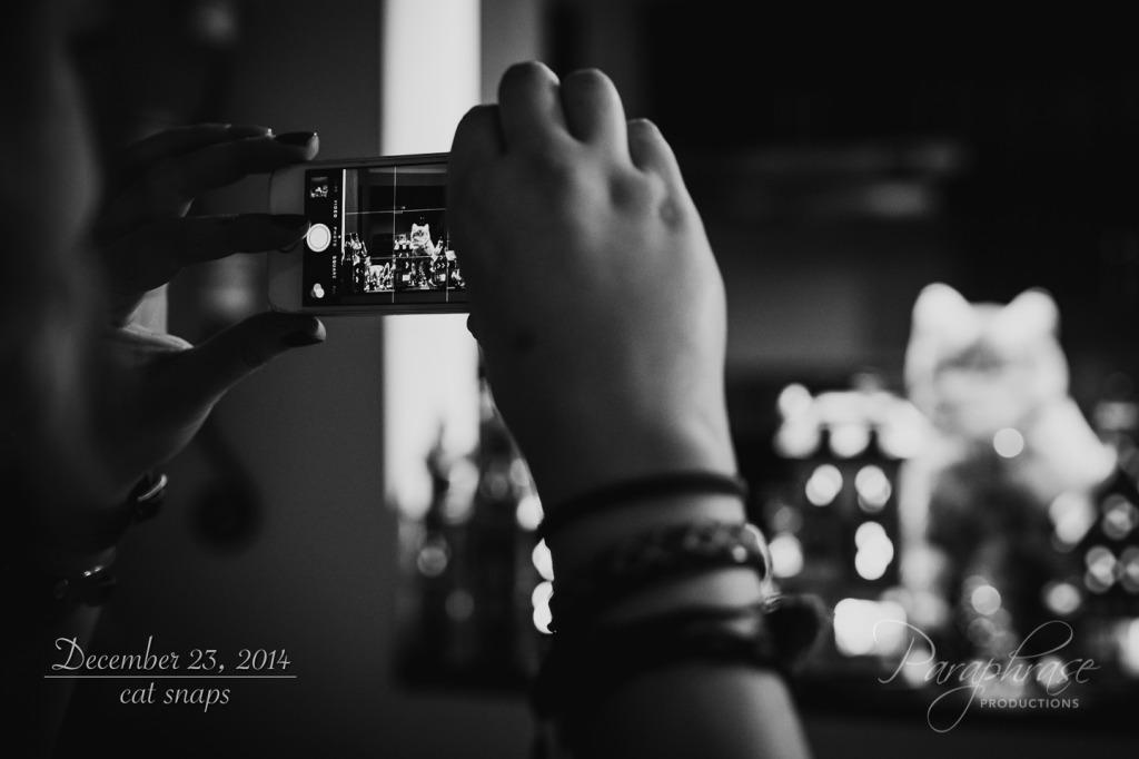20141224-IMG_0445-2-Edit