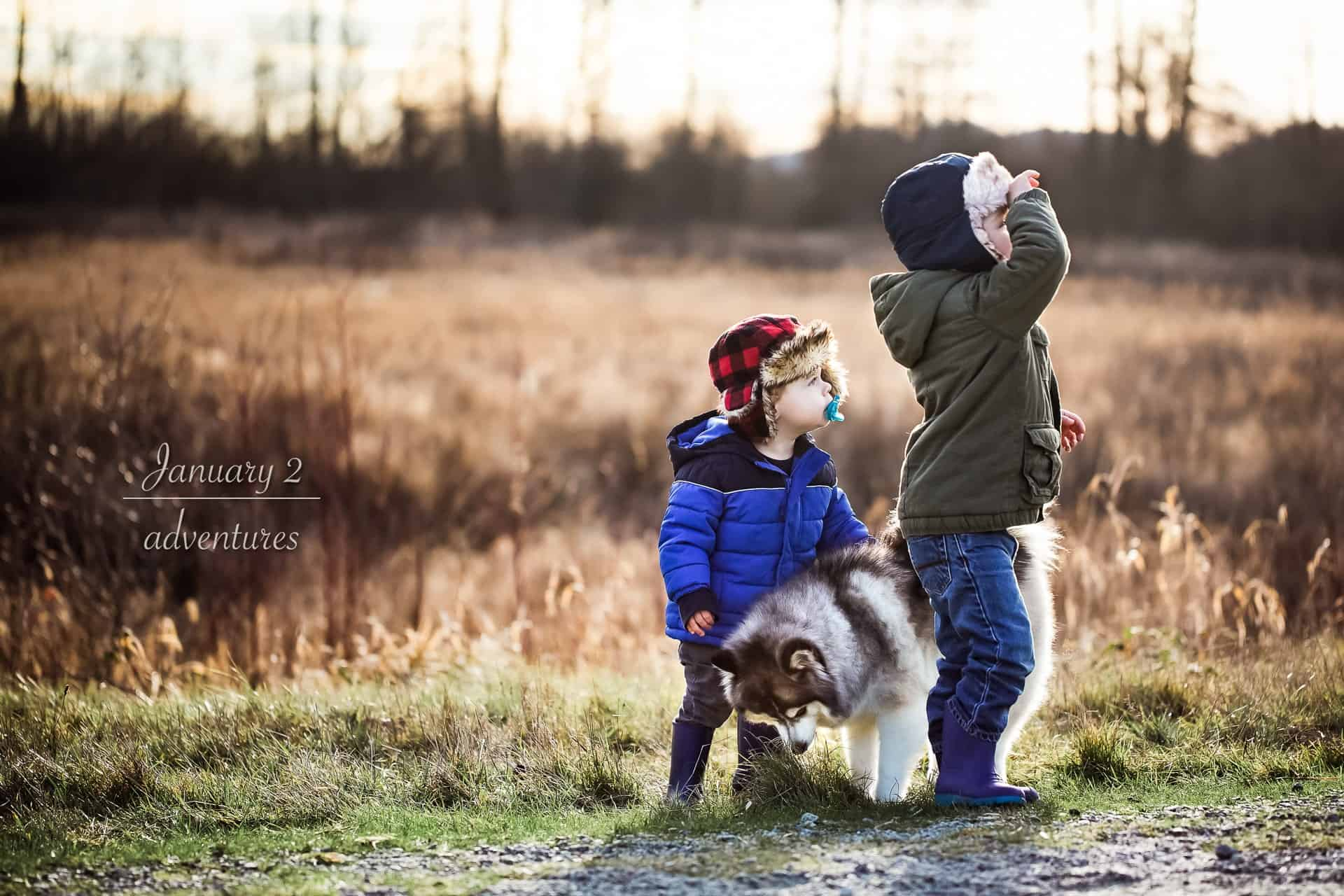 two toddlers with dog playing in a field in golden light