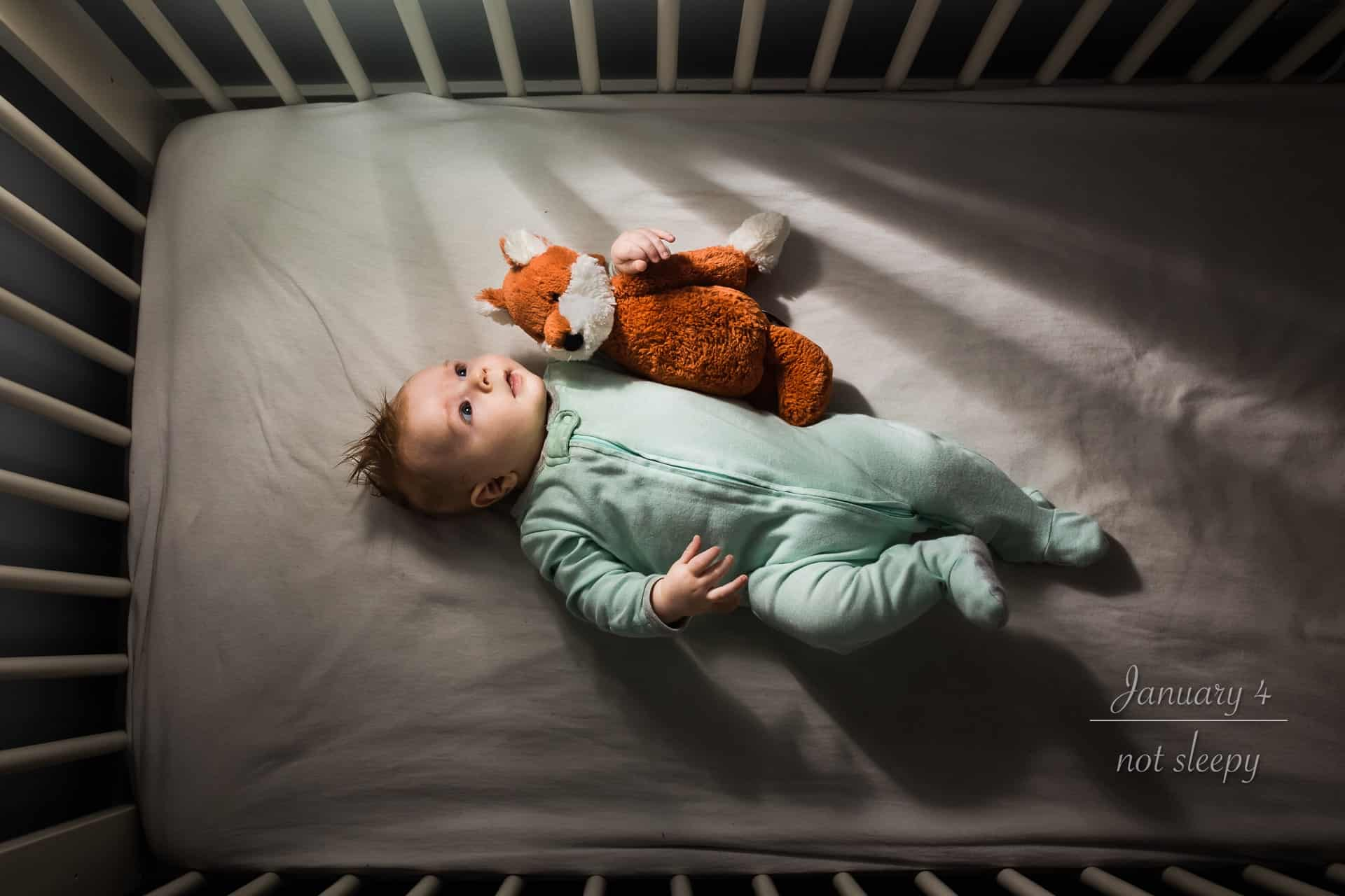 newborn baby with a stuffed fox laying in his crib gazing toward the window light