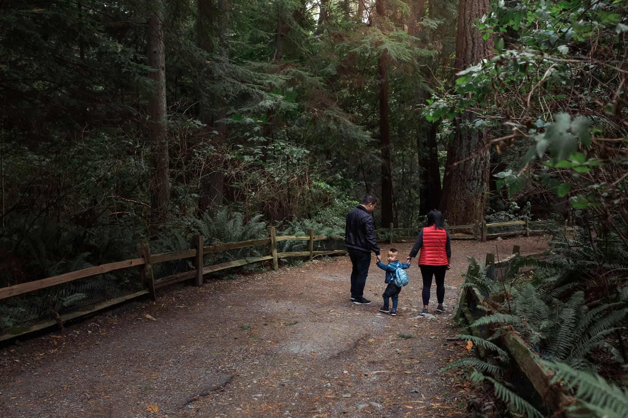 family walking down forest path holding hands while toddler looks back at the camera
