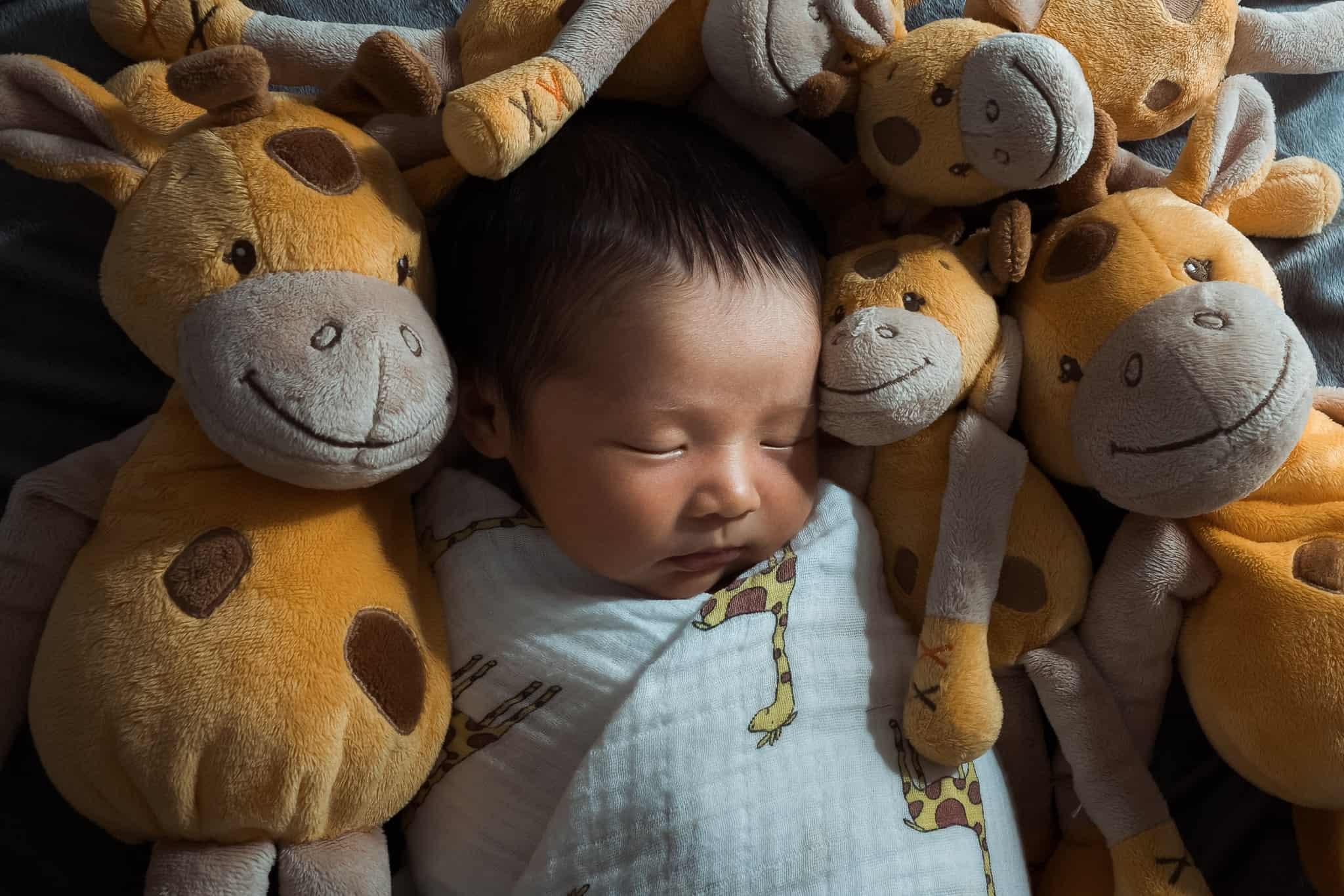 newborn baby swaddled with stuffed giraffes