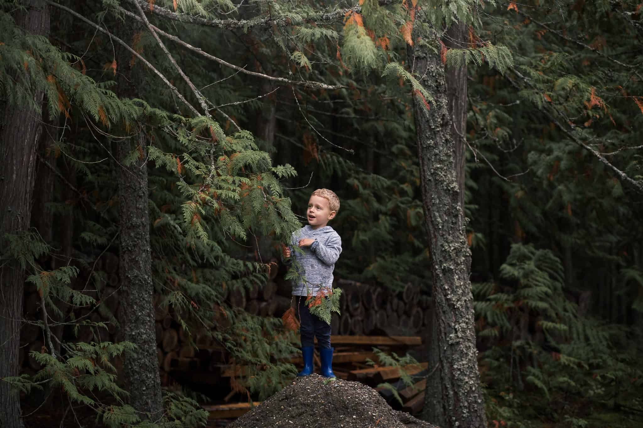 toddler boy on pile of dirt in the forest