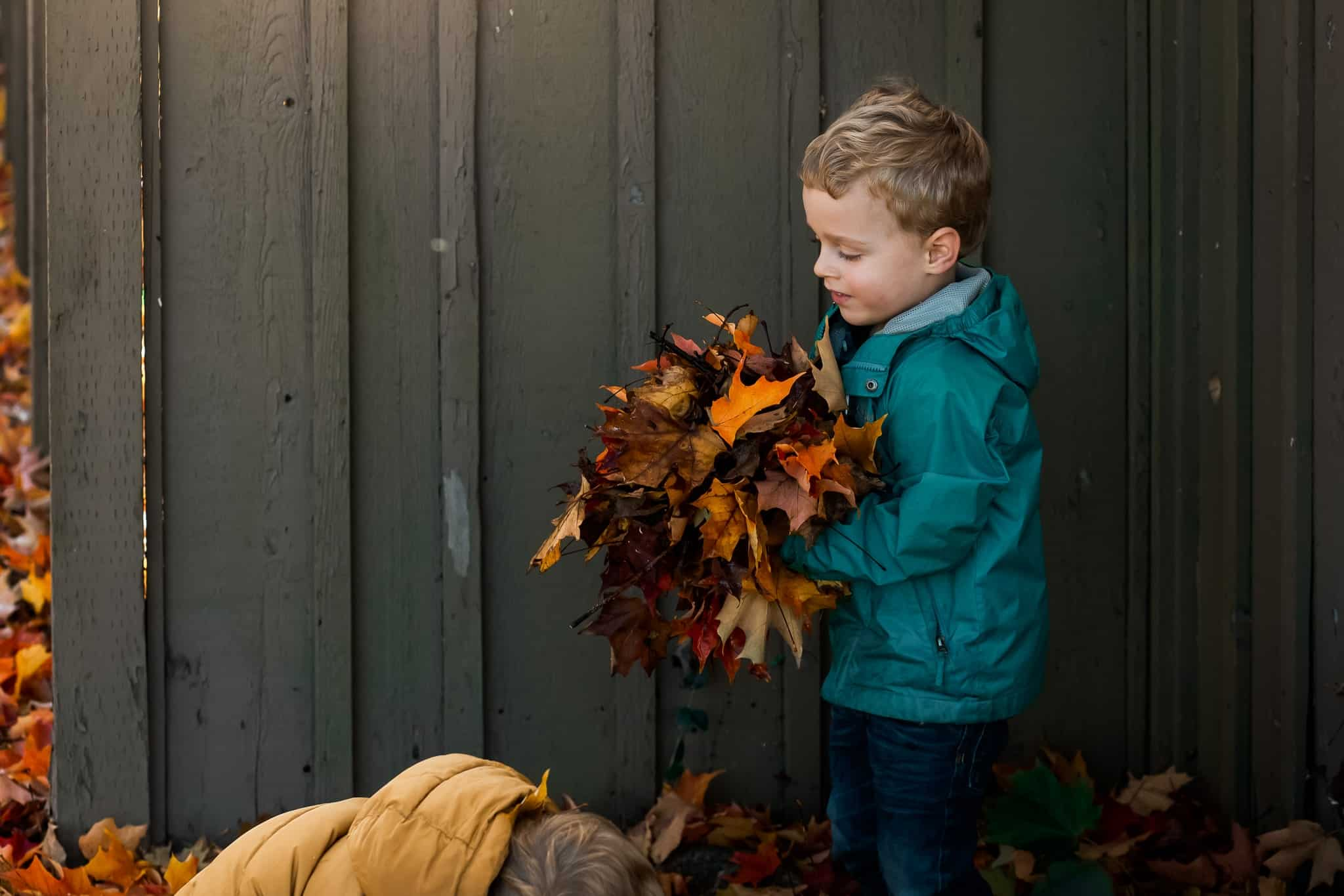 toddler boy holding huge pile of leaves