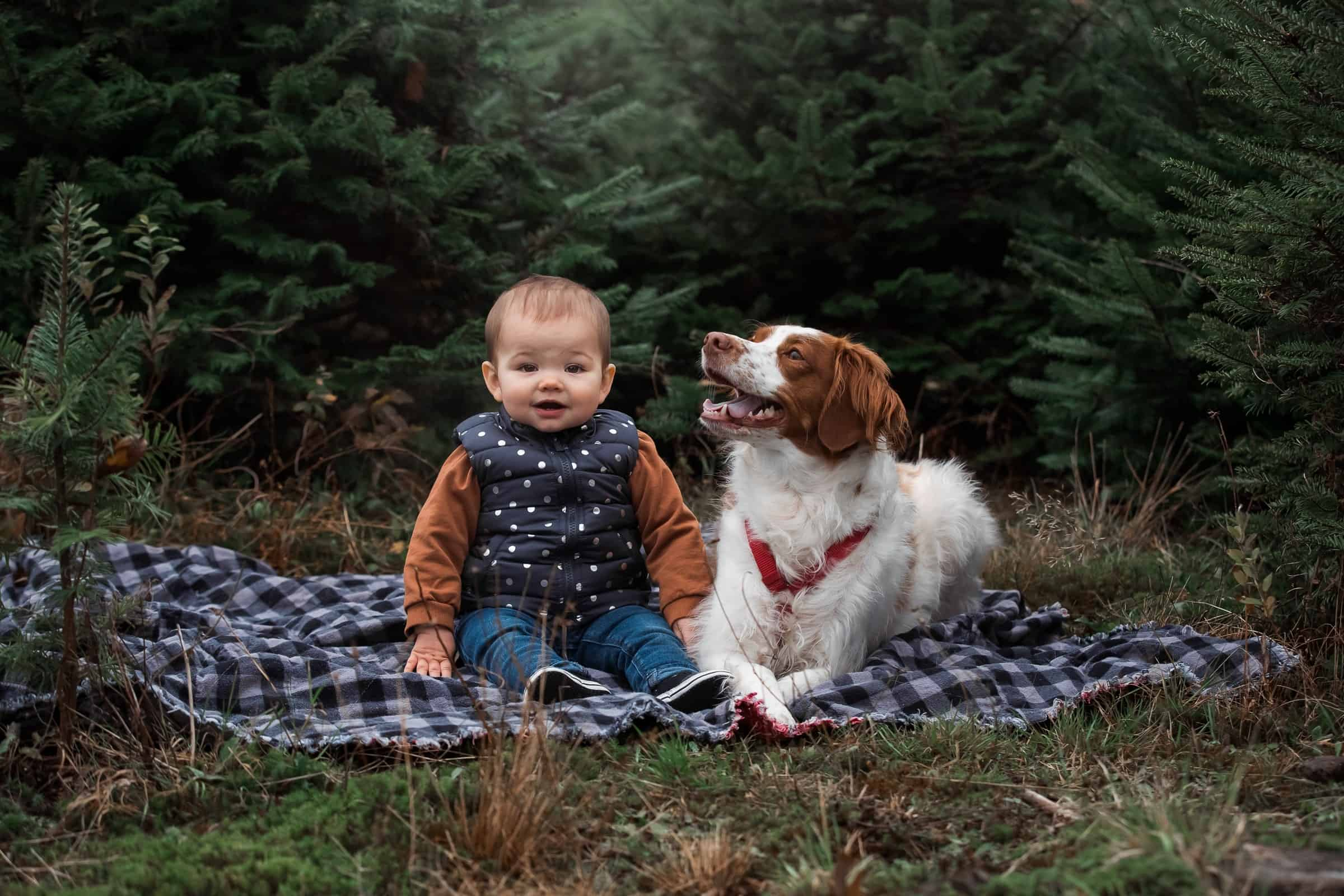 baby posing with dog on plaid blanket
