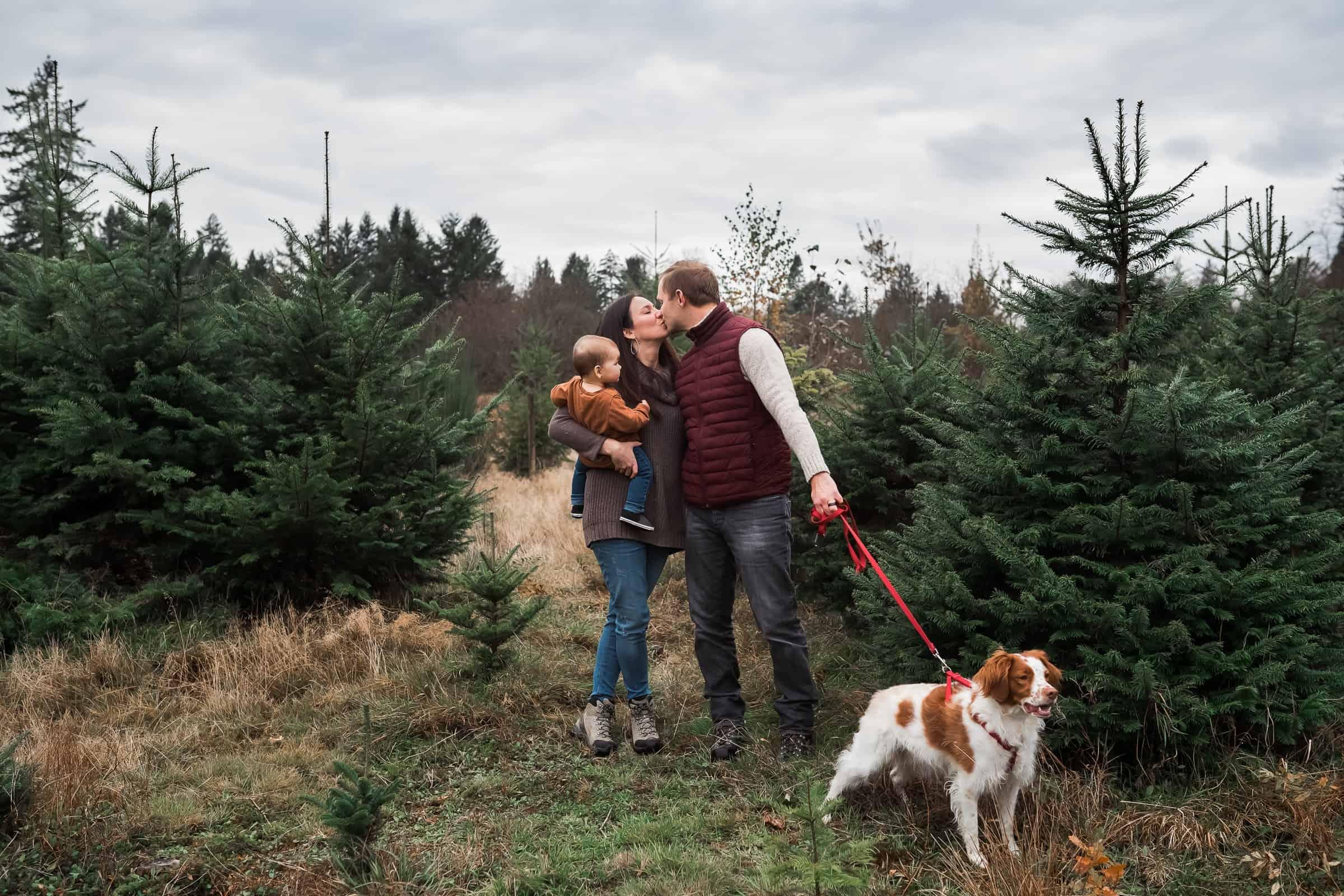 family walking dog at tree farm holding baby
