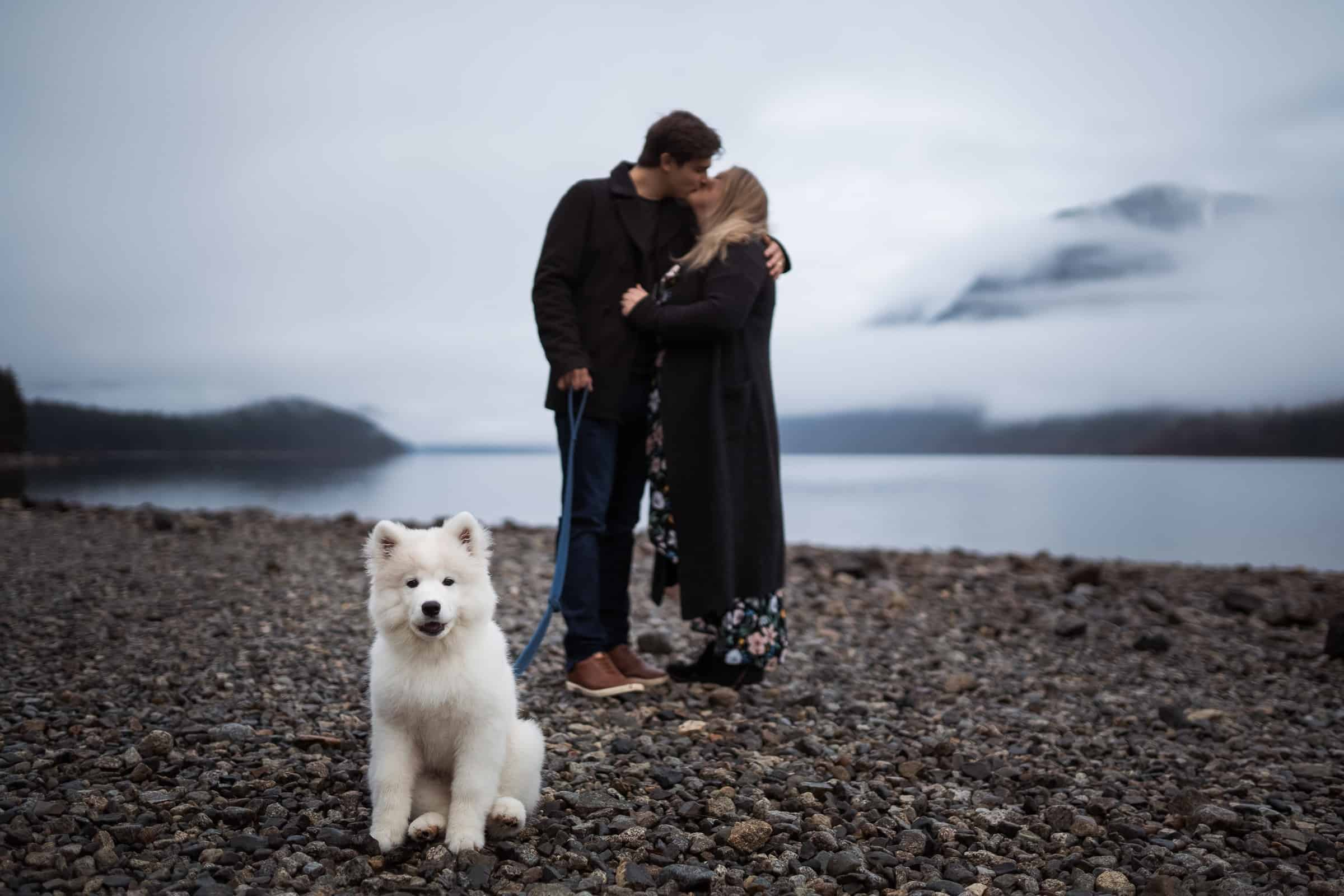 couple kissing by foggy lake in background with white fluffy dog in foreground