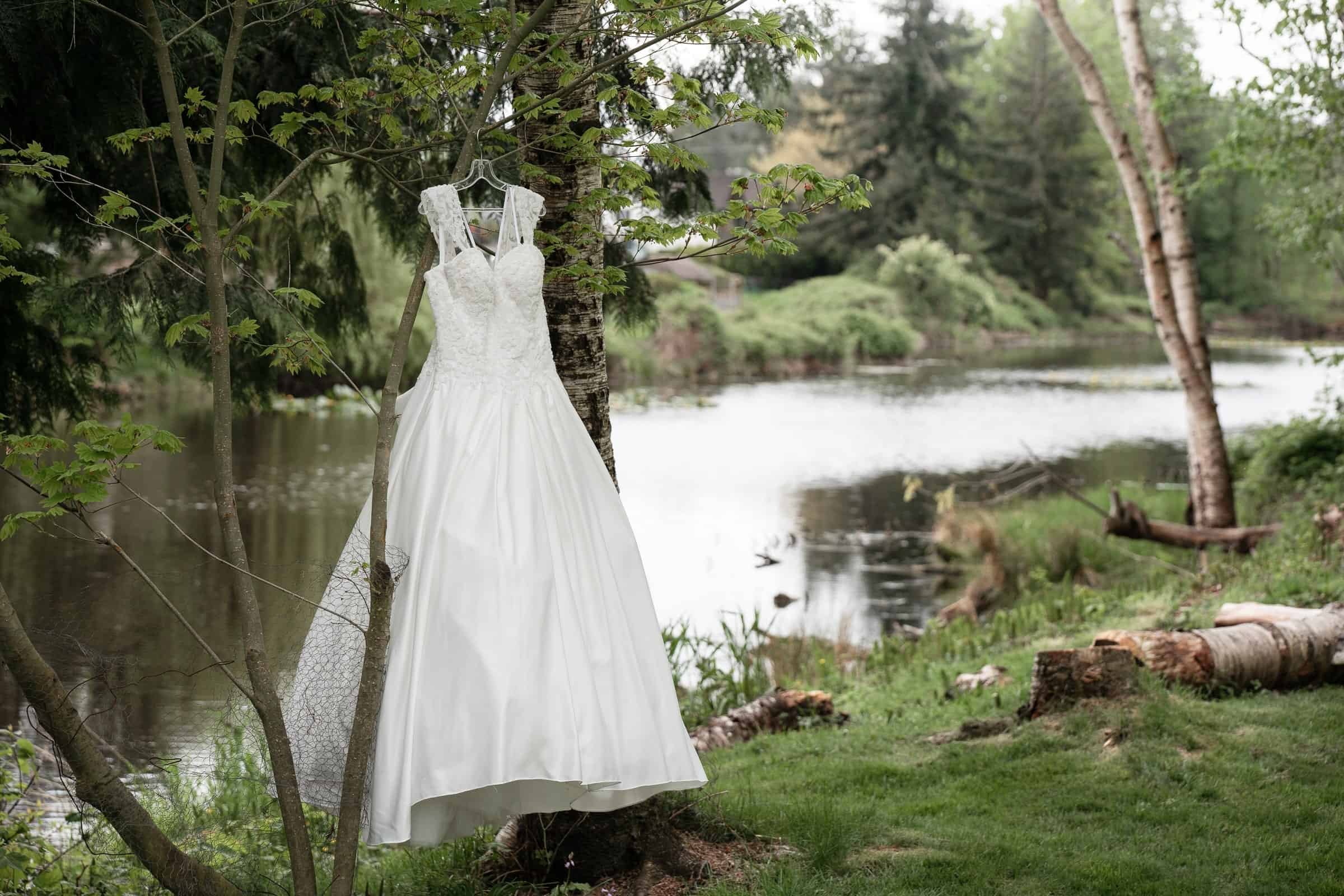 wedding dress hanging in tree by river