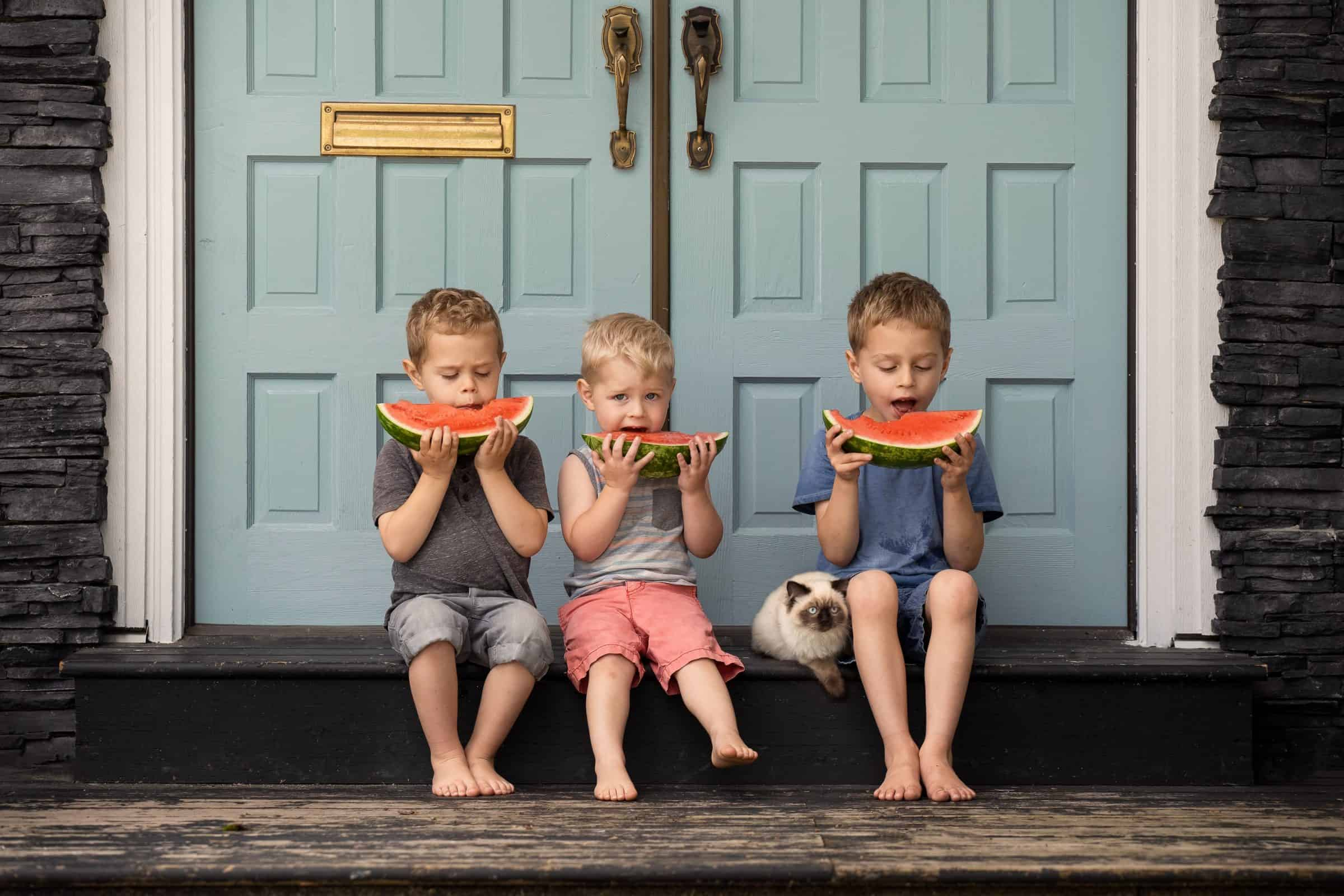 three little boys sitting on porch eating watermelon with cat