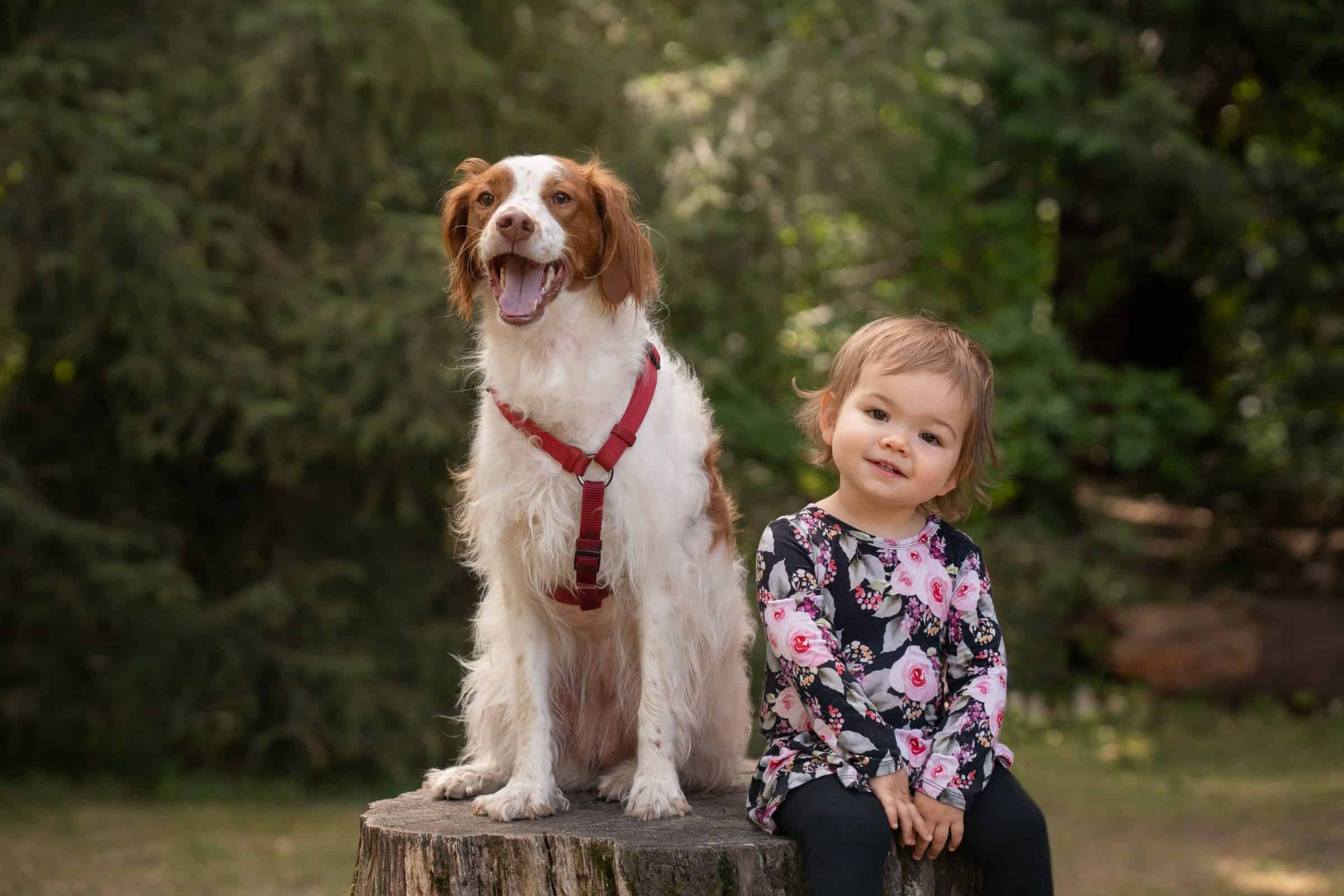 little girl sitting on stump posing with her dog